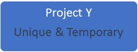 project vs program vs portfolio