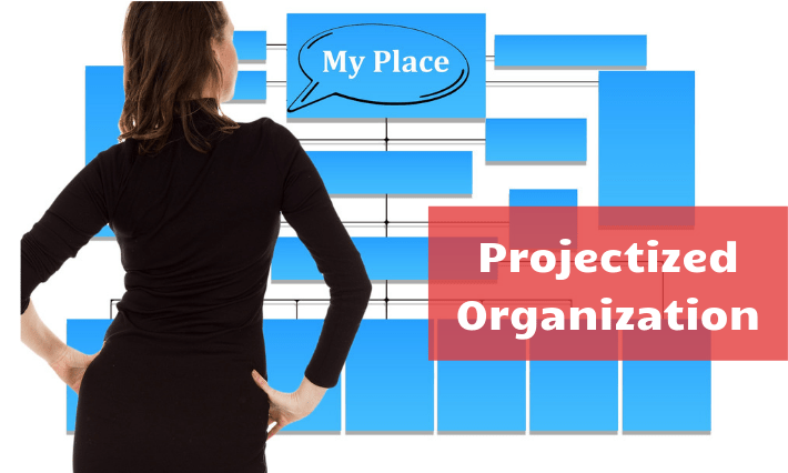 projectized orgnization